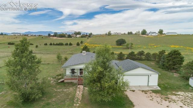 14150 Falcon Highway, Peyton, CO 80831 (#7960696) :: Jason Daniels & Associates at RE/MAX Millennium