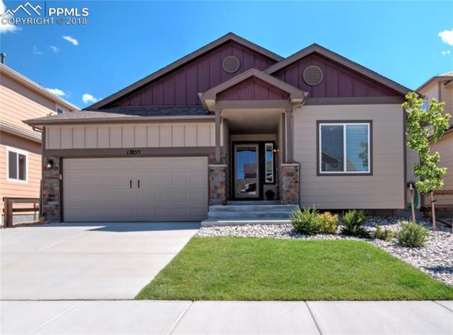 17855 Smelting Rock Drive, Monument, CO 80132 (#7979743) :: Action Team Realty