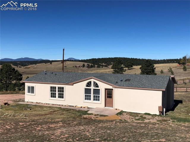 267 E Longbow Drive, Divide, CO 80814 (#7983574) :: Venterra Real Estate LLC