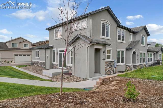 1306 Promontory Bluff View, Colorado Springs, CO 80921 (#8036357) :: CC Signature Group