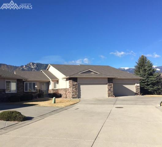 2780 Quail Ridge Point, Colorado Springs, CO 80906 (#8040383) :: RE/MAX Advantage