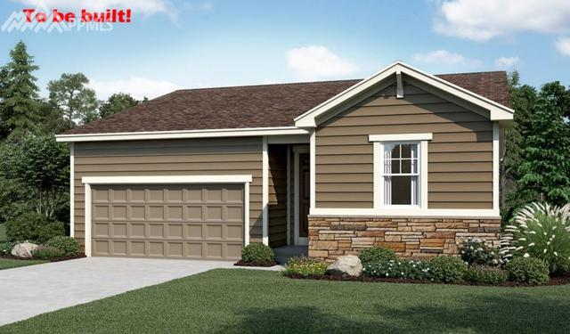 6401 Anders Ridge Lane, Colorado Springs, CO 80923 (#8053163) :: 8z Real Estate