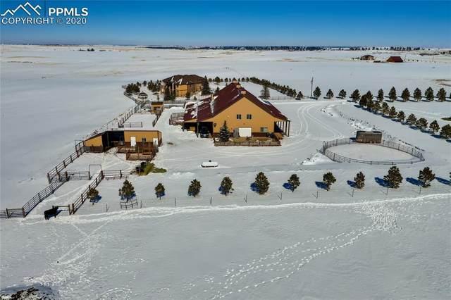 21525 Elk Meadows Circle, Elbert, CO 80106 (#8061880) :: Tommy Daly Home Team