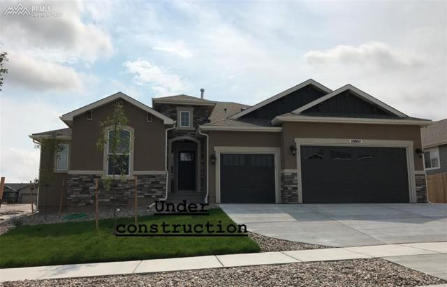 1203 Night Blue Circle, Monument, CO 80132 (#8081578) :: 8z Real Estate