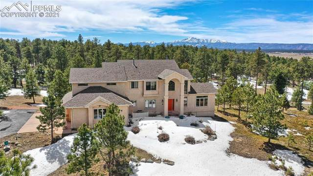 19525 Box Oak Way, Colorado Springs, CO 80908 (#8108835) :: Tommy Daly Home Team
