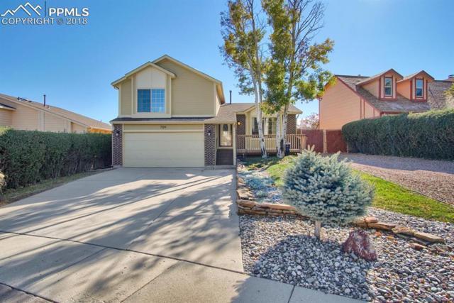 7124 White Buffalo Road, Colorado Springs, CO 80919 (#8142898) :: 8z Real Estate