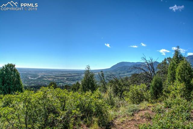 3135 Angel Terrace, Colorado Springs, CO 80904 (#8165369) :: CC Signature Group