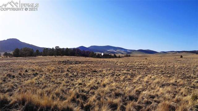 39 View Circle, Guffey, CO 80820 (#8185814) :: The Treasure Davis Team | eXp Realty