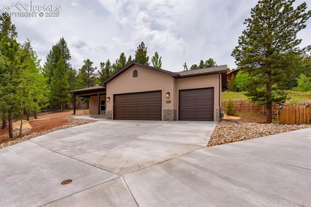 629 Misty Pines Circle, Woodland Park, CO 80863 (#8185928) :: Tommy Daly Home Team