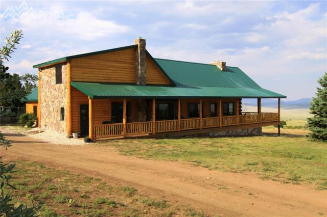 246 County 179 Road, Westcliffe, CO 81252 (#8186163) :: 8z Real Estate