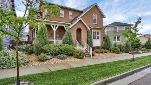 174 Millstream Terrace, Colorado Springs, CO 80905 (#8204107) :: 8z Real Estate