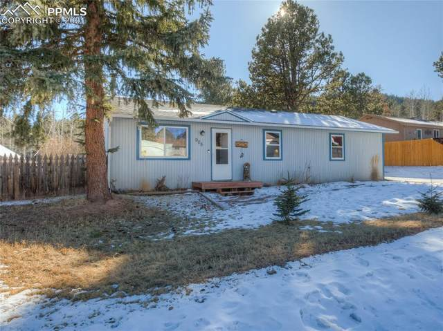 905 W Browning Avenue, Woodland Park, CO 80863 (#8208364) :: Action Team Realty