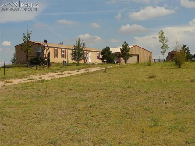4491 S Lauppe Road, Yoder, CO 80864 (#8216418) :: The Hunstiger Team