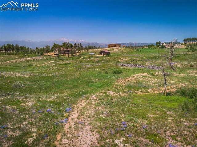 13780 Wildoak Drive, Colorado Springs, CO 80908 (#8217010) :: Tommy Daly Home Team