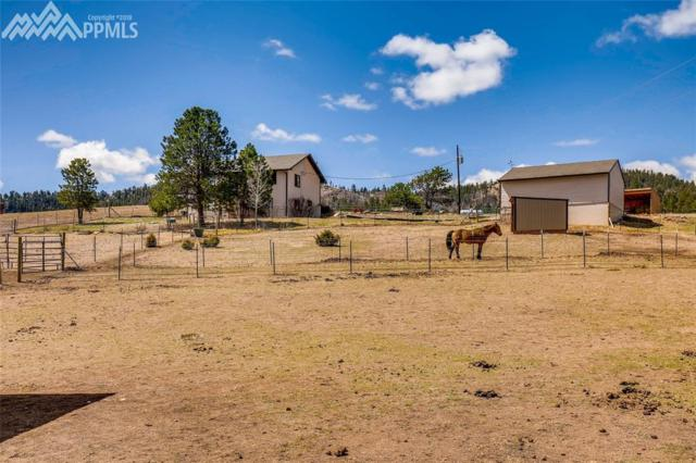 5878 Lakemoor Drive, Florissant, CO 80816 (#8222225) :: 8z Real Estate