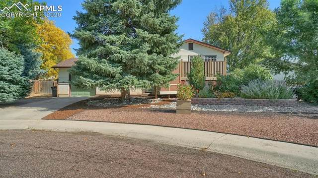 7030 Burroback Court, Colorado Springs, CO 80911 (#8224420) :: The Treasure Davis Team