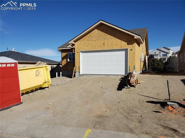 4480 Seton Place, Colorado Springs, CO 80918 (#8230068) :: 8z Real Estate