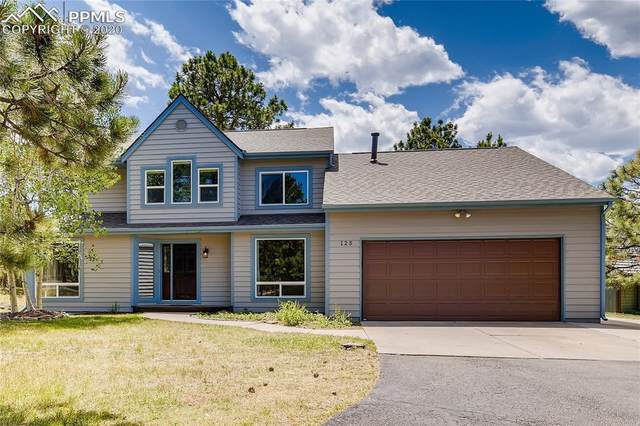 125 Winding Meadow Way, Monument, CO 80132 (#8245949) :: The Daniels Team