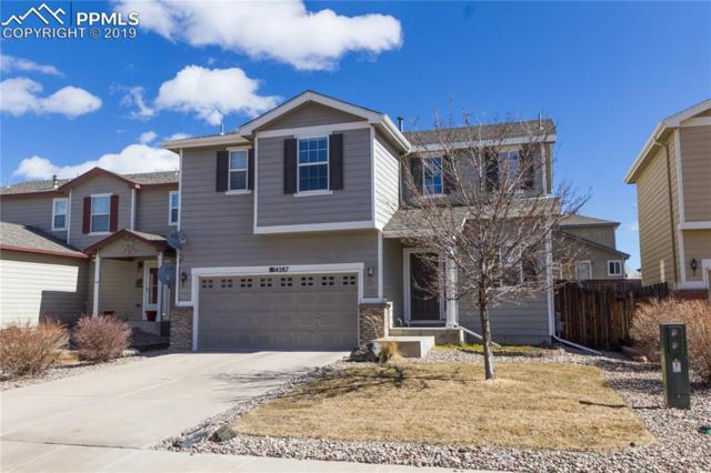 14287 White Peak Drive, Colorado Springs, CO 80921 (#8256792) :: CC Signature Group