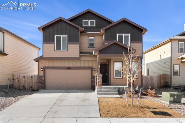 9850 Silver Stirrup Drive, Colorado Springs, CO 80925 (#8264664) :: Harling Real Estate