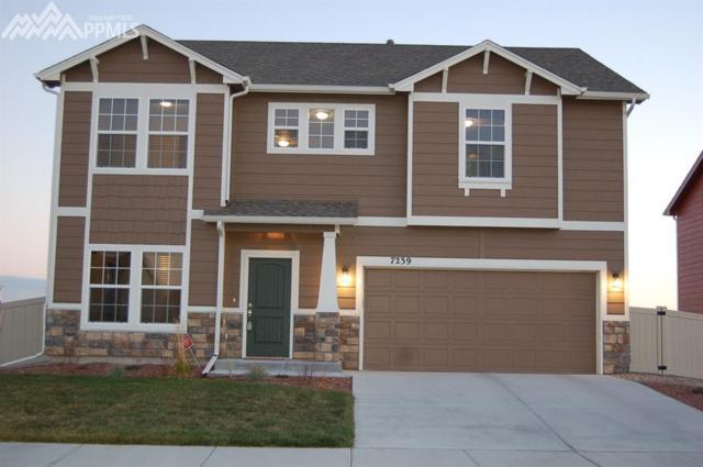 7239 Trione Lane, Fountain, CO 80817 (#8267483) :: 8z Real Estate