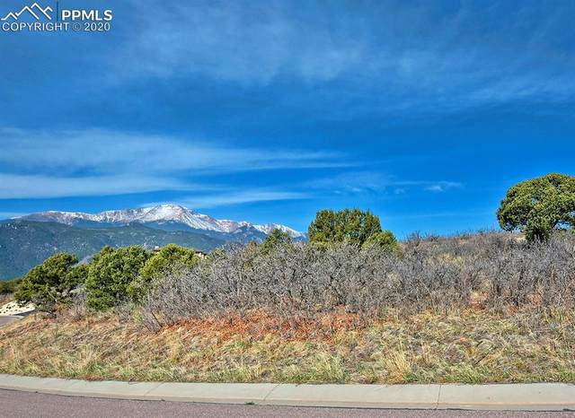 3710 Outback Vista Point, Colorado Springs, CO 80904 (#8274412) :: Colorado Home Finder Realty