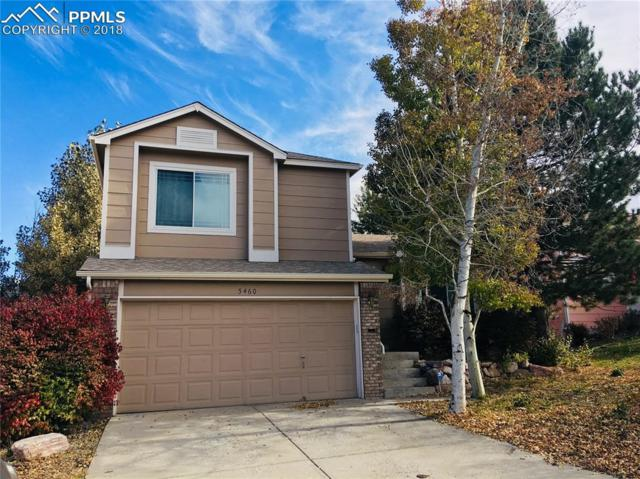 5460 Paradox Drive, Colorado Springs, CO 80923 (#8278433) :: CENTURY 21 Curbow Realty