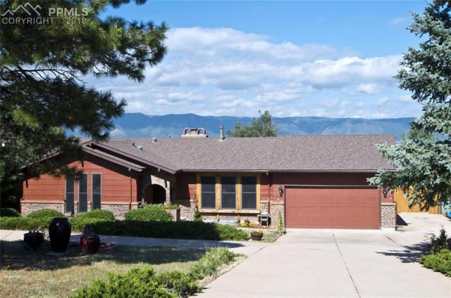 939 Tari Drive, Colorado Springs, CO 80921 (#8306940) :: Jason Daniels & Associates at RE/MAX Millennium