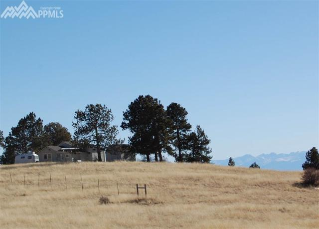 835 County 89 Road, Cripple Creek, CO 80813 (#8340833) :: Jason Daniels & Associates at RE/MAX Millennium