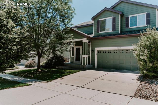 7235 Edgebrook Drive, Colorado Springs, CO 80922 (#8365306) :: 8z Real Estate
