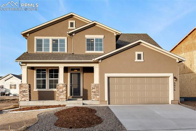 9976 Morning Vista Drive, Peyton, CO 80831 (#8388717) :: Fisk Team, RE/MAX Properties, Inc.