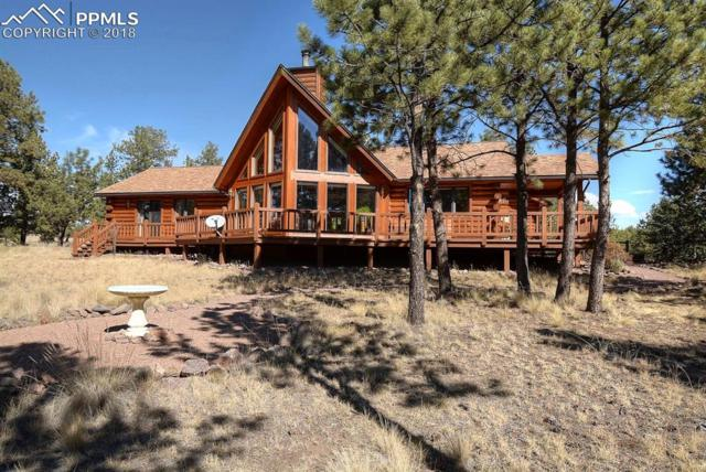 930 Doe Valley Road, Guffey, CO 80820 (#8390591) :: Action Team Realty