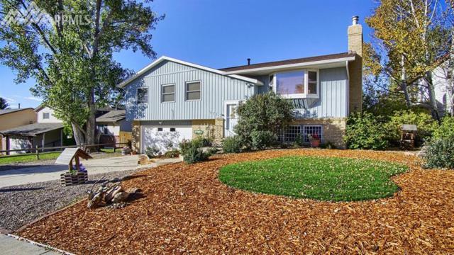 2715 Sunbird Drive, Colorado Springs, CO 80918 (#8400497) :: 8z Real Estate