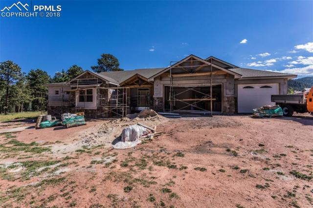 1225 Cottontail Trail, Woodland Park, CO 80863 (#8404864) :: The Hunstiger Team