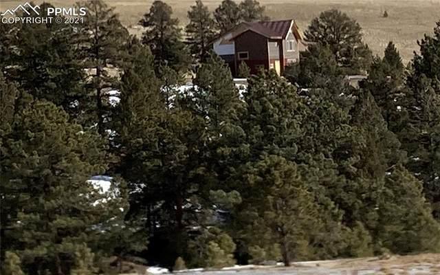 7042 Autumn Creek Drive, Canon City, CO 81212 (#8416455) :: Compass Colorado Realty
