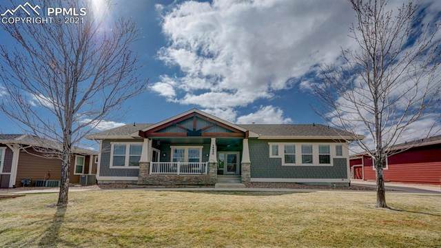 16850 Buffalo Valley Path, Monument, CO 80132 (#8430079) :: The Artisan Group at Keller Williams Premier Realty