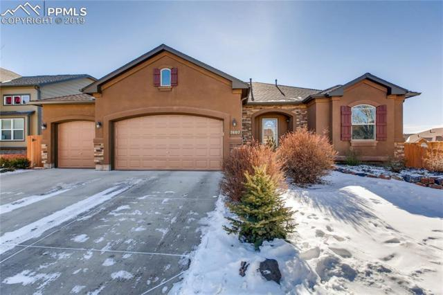 7607 Desert Wind Drive, Colorado Springs, CO 80923 (#8436490) :: Action Team Realty