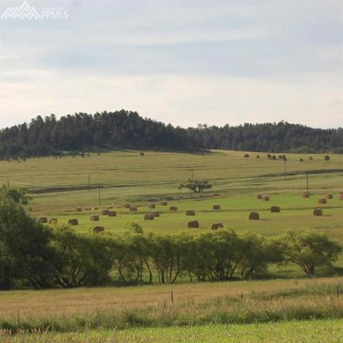 tbd 2 Evans Road, Colorado Springs, CO 80106 (#8439607) :: 8z Real Estate