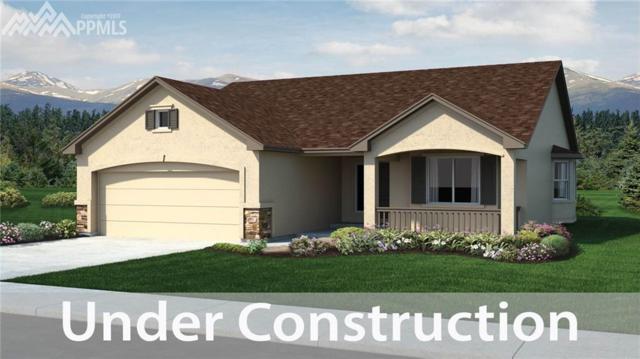 10892 Warm Sunshine Drive, Colorado Springs, CO 80908 (#8473561) :: 8z Real Estate