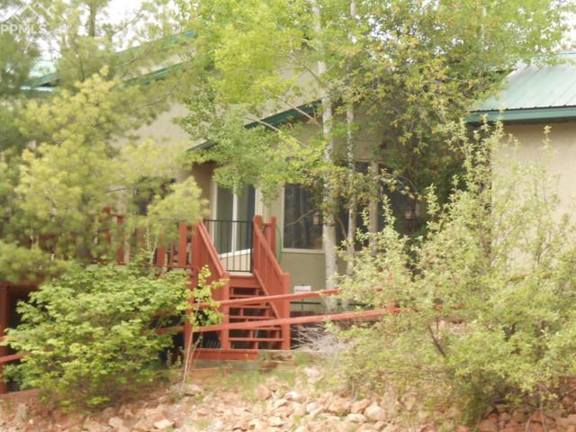 625 Sunny Glen Court, Woodland Park, CO 80863 (#8473716) :: The Treasure Davis Team