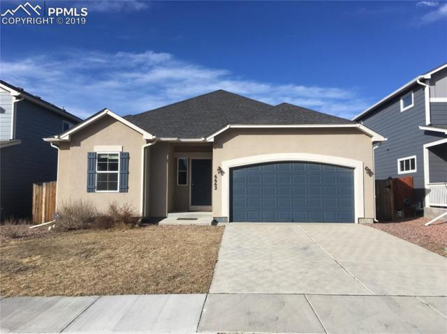 6662 Stingray Lane, Colorado Springs, CO 80925 (#8476853) :: 8z Real Estate