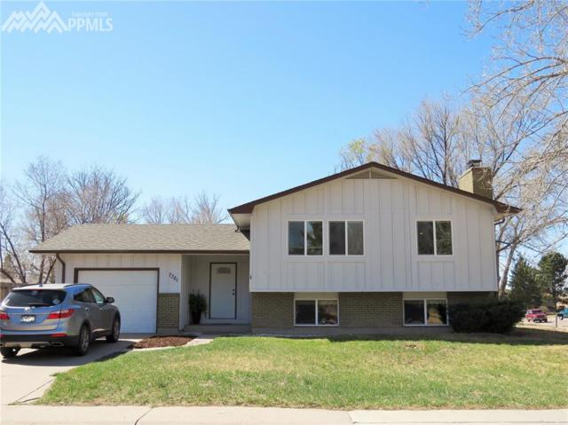 7381 Sullivan Circle, Colorado Springs, CO 80911 (#8481942) :: The Dunfee Group - Keller Williams Partners Realty