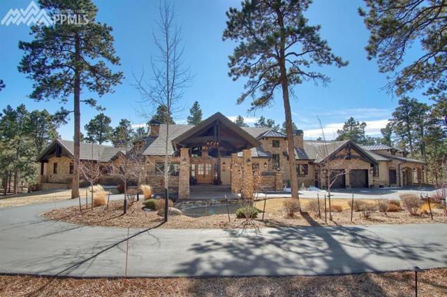 15547 Open Sky Way, Colorado Springs, CO 80908 (#8492485) :: The Treasure Davis Team