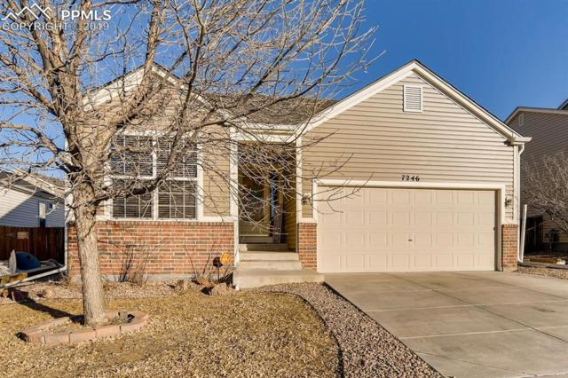 7246 Brush Hollow Drive, Fountain, CO 80817 (#8499098) :: 8z Real Estate