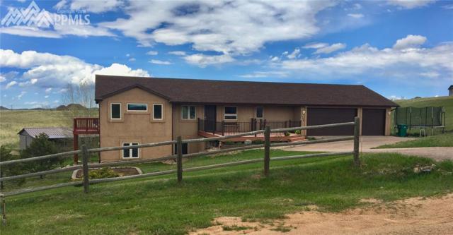 7404 Paleo Way, Colorado Springs, CO 80908 (#8510709) :: 8z Real Estate