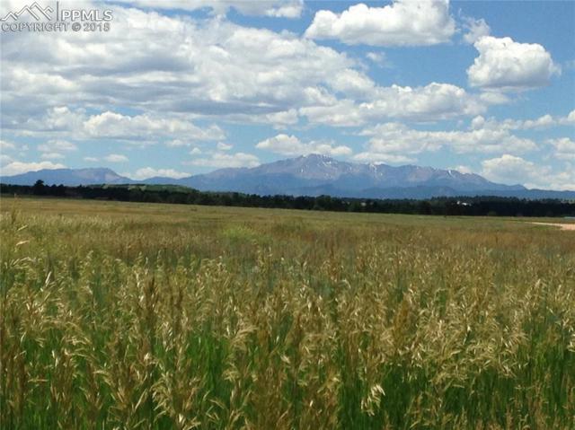 10375 Big Sky Trail, Elbert, CO 80106 (#8523029) :: 8z Real Estate