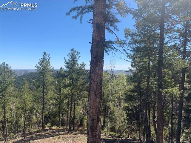 13670 Spruce Creek Circle, Larkspur, CO 80118 (#8532155) :: Tommy Daly Home Team