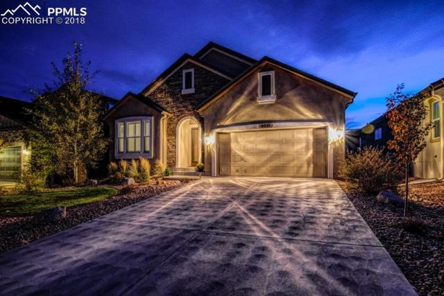 9031 Rollins Pass Court, Colorado Springs, CO 80924 (#8547569) :: Harling Real Estate
