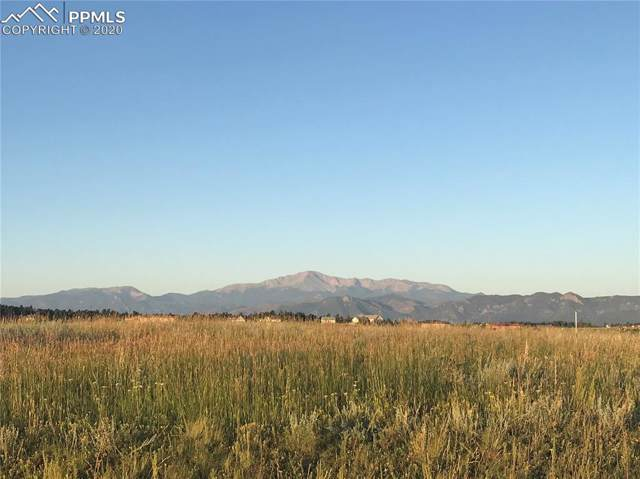 17108 Elk Basin Court, Colorado Springs, CO 80908 (#8574277) :: 8z Real Estate
