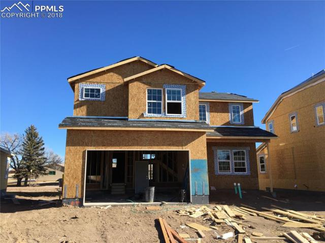 8199 Burl Wood Drive, Colorado Springs, CO 80908 (#8587130) :: The Daniels Team